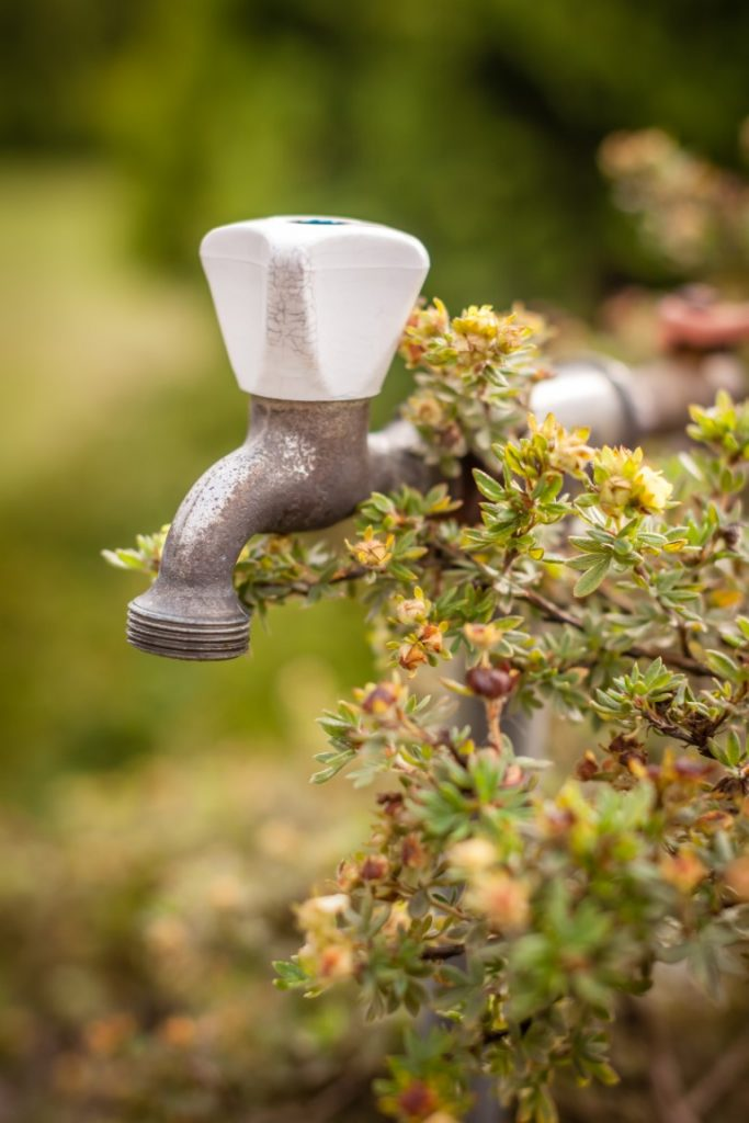 Outside Water Tap Installation